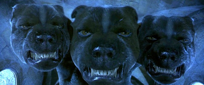 HOUNDS Fluffy-Harry-Potter-Hell-hound