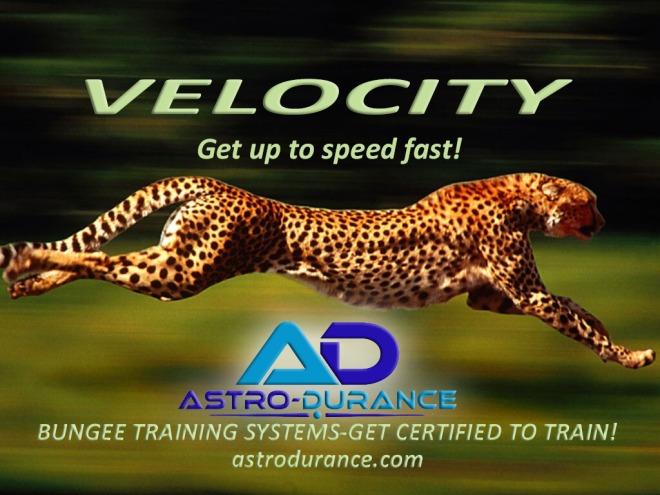 velocity-tiger use